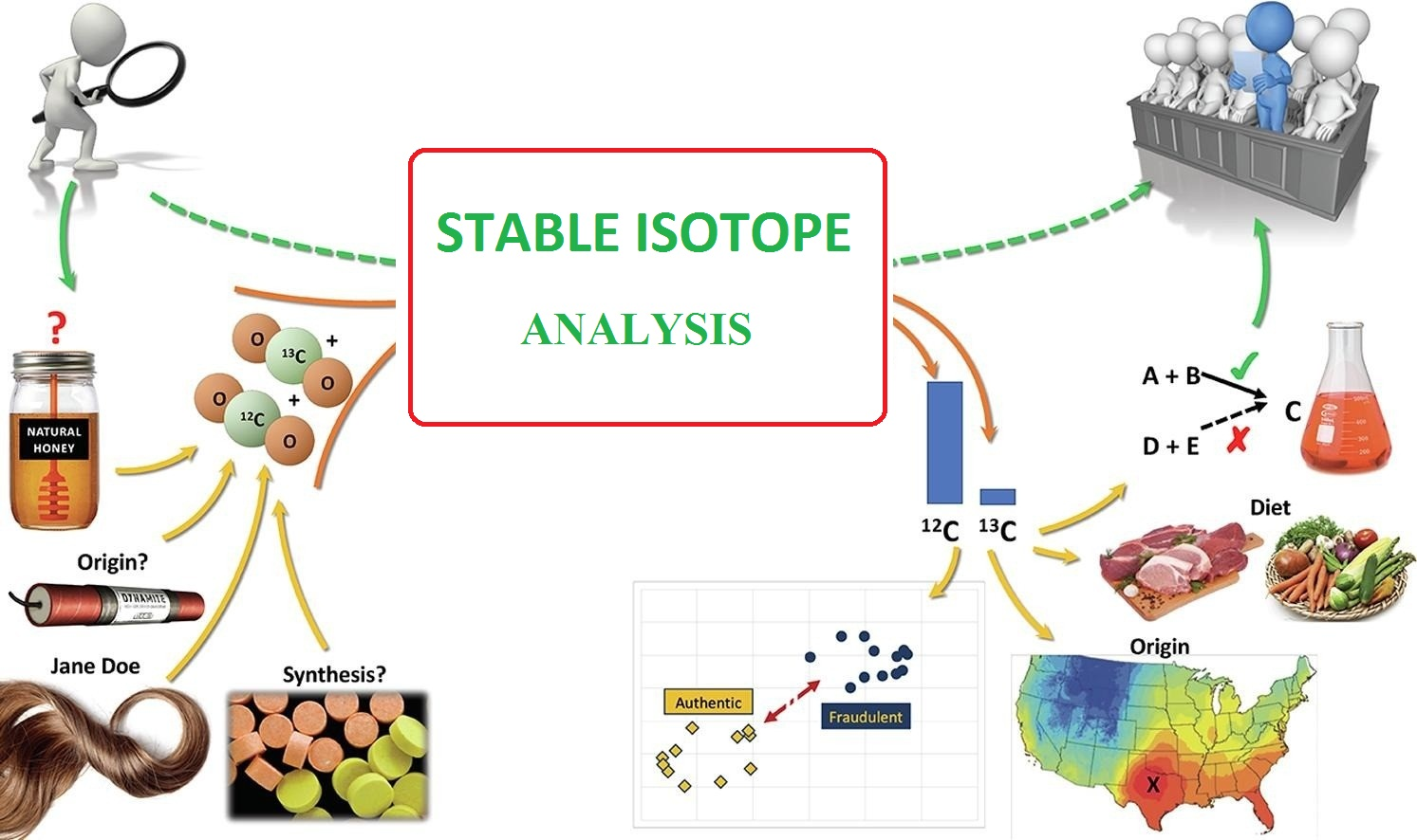 stable isotop